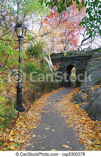 New York City Central park Stone bridge - csp5300378