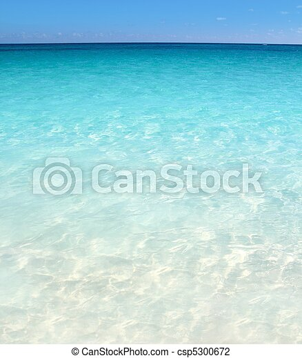 Caribbean turquoise sea beach shore white sand - csp5300672