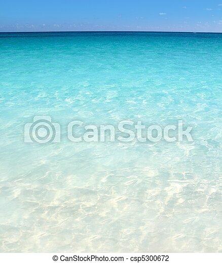 Caribbean turquoise sea beach shore white sand - csp5300672
