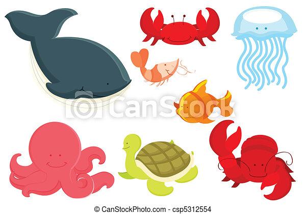 Marine animals cartoon - csp5312554