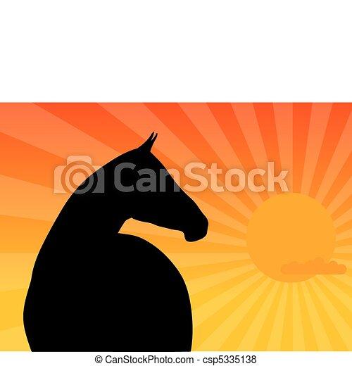 horse - csp5335138
