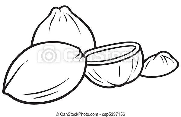 Comment dessiner une noix - Dessin noix de coco ...