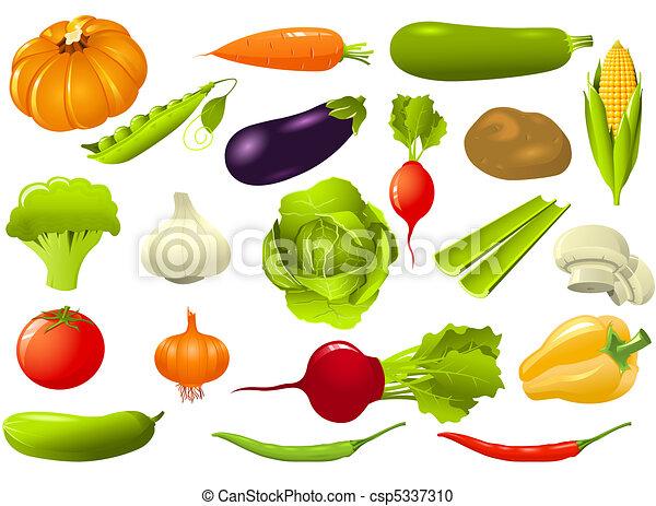 Set of vegetables - csp5337310