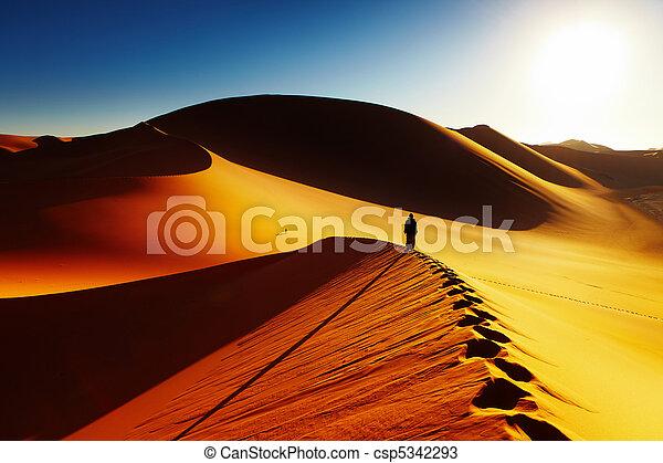Sahara Desert, Algeria - csp5342293