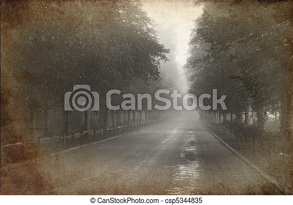 Retro grunge vintage effect photo of Tree lined avenue with misty and foggy distance - csp5344835