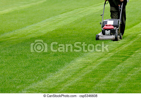 Gardening  - csp5346608