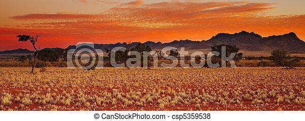Kalahari Desert - csp5359538