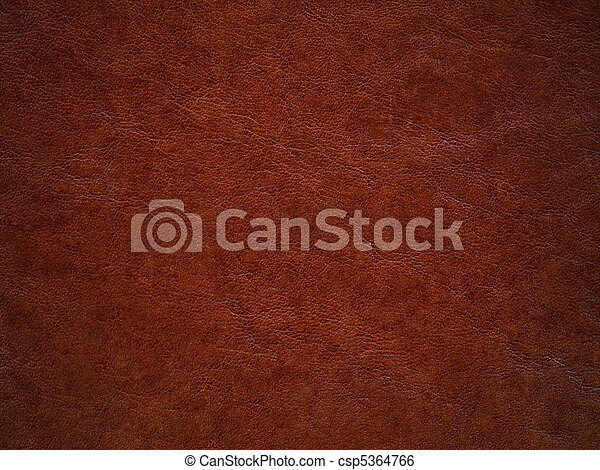 Brown leather - csp5364766
