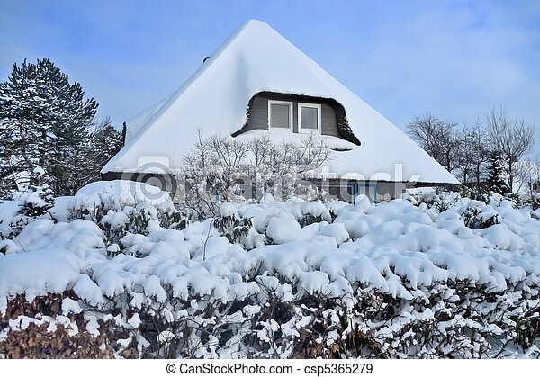 Snow covered thatched roof - csp5365279