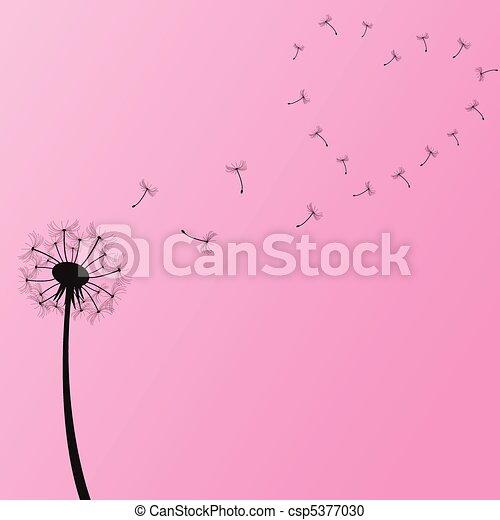 Dandelion Illustration - csp5377030