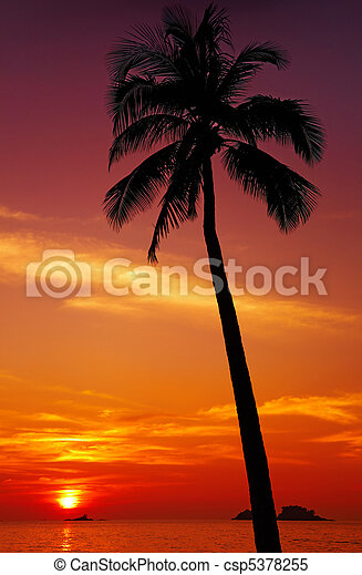 Tropical sunset - csp5378255