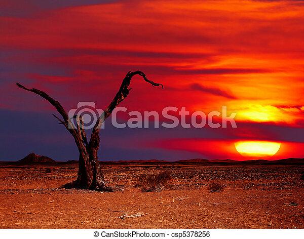fantasia, Deserto - csp5378256
