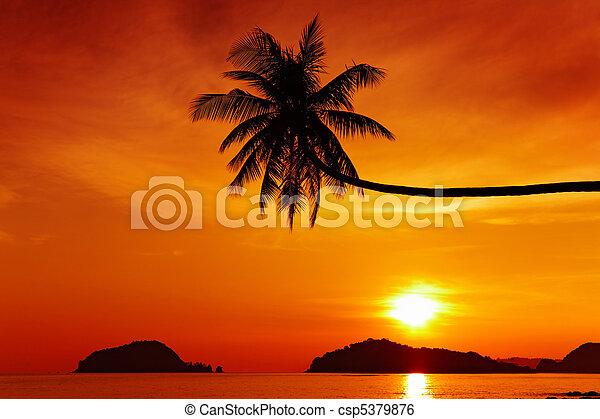 Tropical beach at sunset - csp5379876