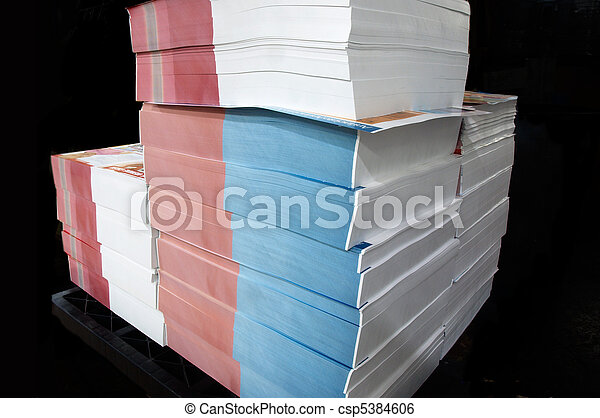 pile of printed paper in a printing company waiting for finishing - csp5384606
