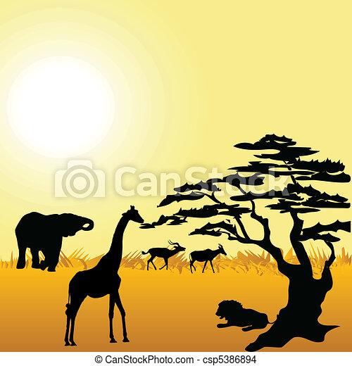 African Wildlife - csp5386894
