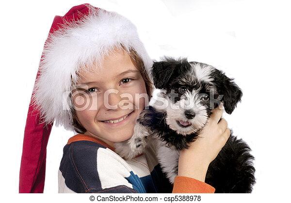 Boy with  little Powder-puff puppy - csp5388978