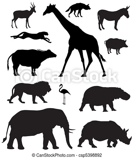 African animals - csp5398892