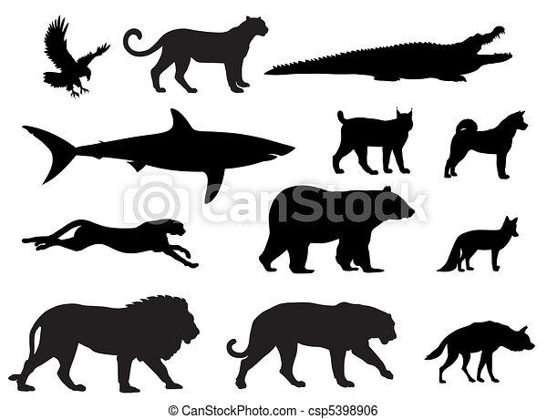Predators - csp5398906