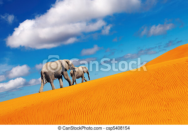 Desert fantasy, elephants walking - csp5408154