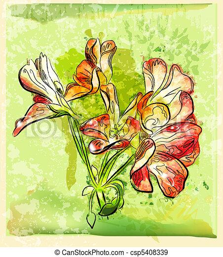hand drawn red geranium flower - csp5408339