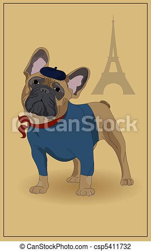 French Bulldog - csp5411732