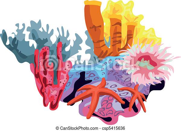 Coral Reef - csp5415636
