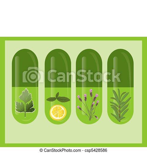 Vector Herbal Medicine - csp5428586