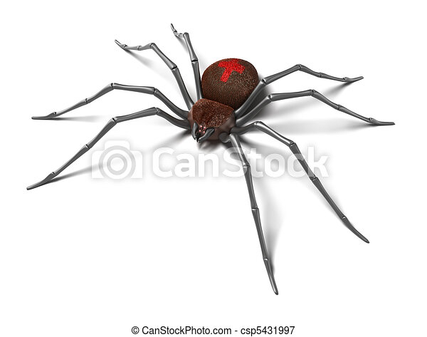 Spider : Black Widow. Isolated. - csp5431997