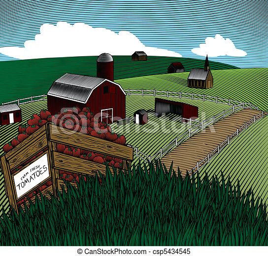Produce Crate Landscape Color - csp5434545