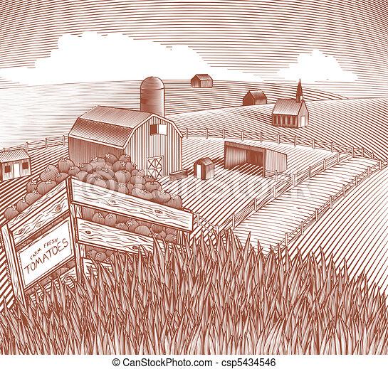 Produce Crate Landscape - csp5434546