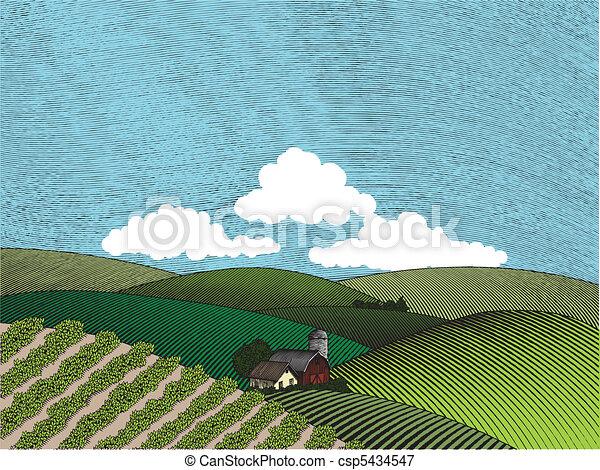 Rural Farm Scene Color - csp5434547