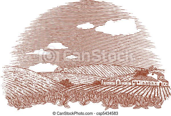 Tuscan Landscape - csp5434583