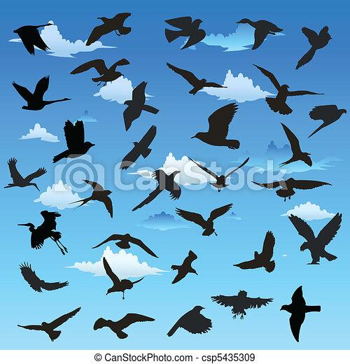 Vecteurs eps de vol oiseaux oiseaux dans vol - Dessin oiseau en vol ...