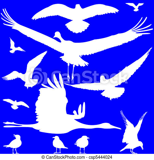 white birds silhouettes over blue - csp5444024