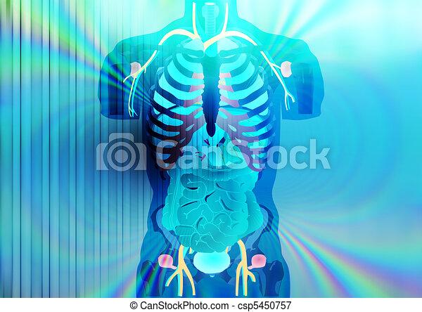 X-ray - csp5450757