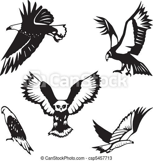 Five stylized birds of prey  - csp5457713