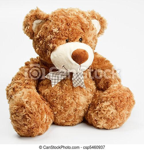Furry teddy bear - csp5460937
