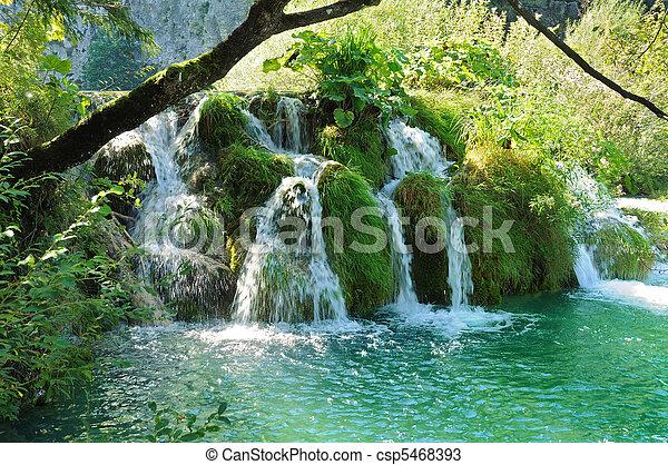 cascada, bosque - csp5468393