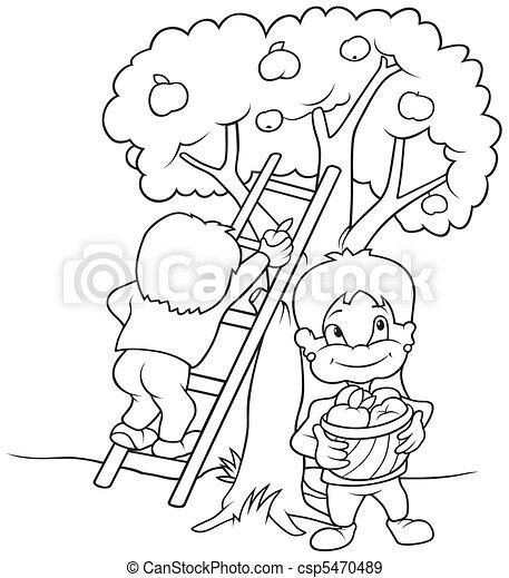 Children's Harvesting Fruits - csp5470489