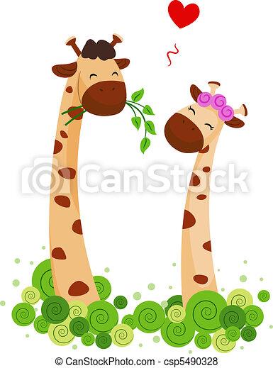 Giraffe Couple - csp5490328