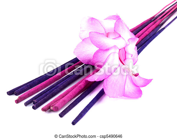 Purple incense and pink cactus flower - csp5490646