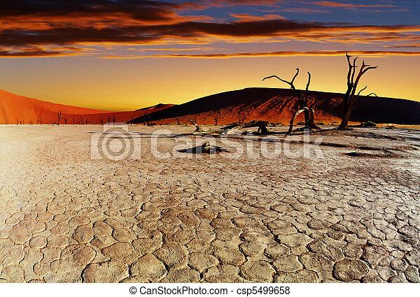 Namib Desert, Sossusvlei, Namibia - csp5499658
