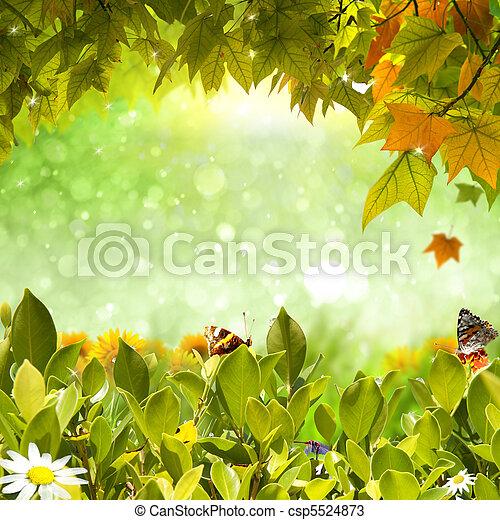 Nature background - csp5524873