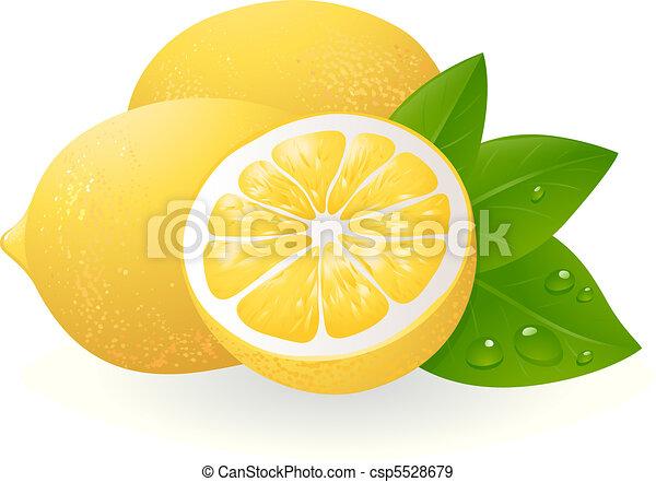 Fresh lemons with leaves - csp5528679