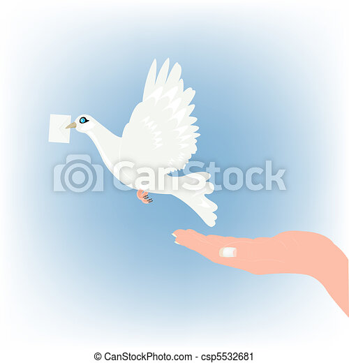 White dove carries letter in beak - csp5532681