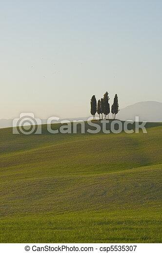 tuscan lanscape - csp5535307