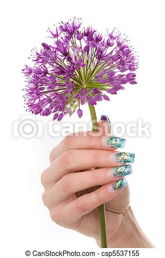 manicure - csp5537155