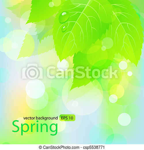 Spring  background  with green leaves - csp5538771