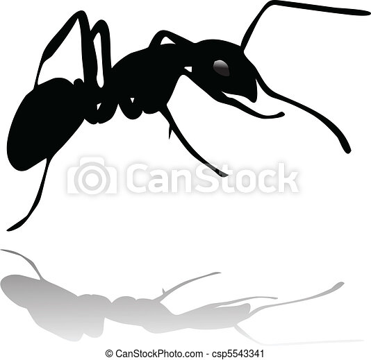 ant silhouette vector with shadow - csp5543341