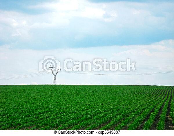 Greenery plantation - csp5543887